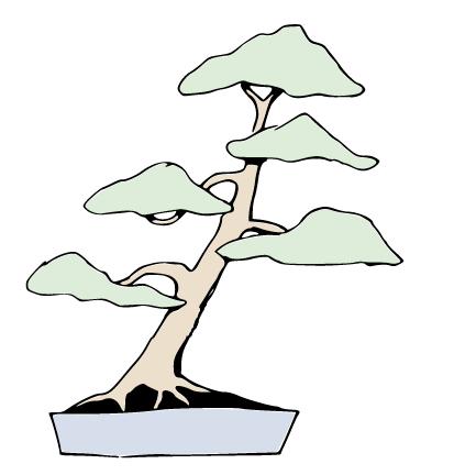 bonsái inclinado